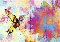 Hummingbird XVIII Fine Art Print