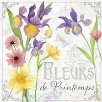 Fleurs III Fine Art Print