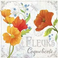 Fleurs IV Fine Art Print