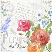 Fleurs V Fine Art Print