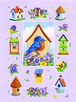 Bluebird And Pansies Fine Art Print