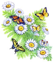 Daisies and Butterflies Fine Art Print