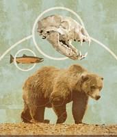 Bear Country Fine Art Print