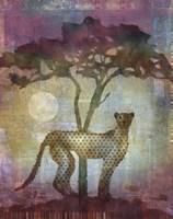 Africa Cheetah Fine Art Print
