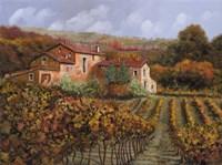 Tra Le Vigne a Montalcino Fine Art Print