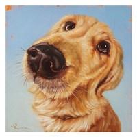 Follow Your Nose 4 Fine Art Print