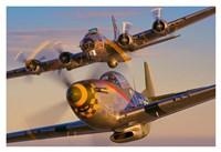 North American P-51D-25-NA 'Mustang' N5428V Fine Art Print