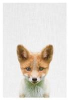 Baby Fox Fine Art Print