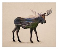 The Alaskan Bull Moose Fine Art Print