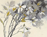 Magnolias Yellow Gray Fine Art Print