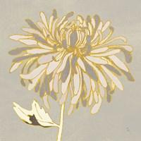 Sarahs Garden Gatsby III Fine Art Print
