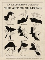 The Art of Shadows X Framed Print