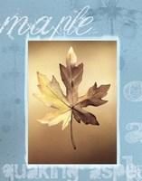 Autumn II Fine Art Print