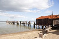China Camp Pier Fine Art Print