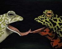 Horny Toads 1 Fine Art Print