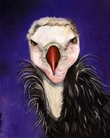 Baby Vulture Fine Art Print