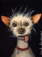 Ugly Dog Fine Art Print