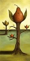 Pear Tree 1 Fine Art Print