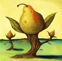 Pear Trees 2 Fine Art Print