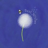 Best Wishes Dandelion Fine Art Print