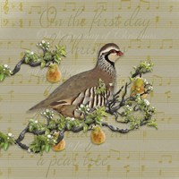 Partridge In A Pear Tree Fine Art Print