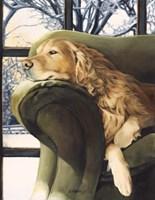 lounging Fine Art Print