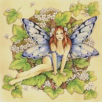 Guelder Rose Fine Art Print