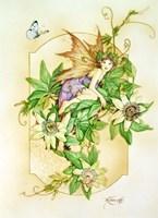 Passiflora Fine Art Print