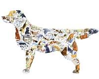 Dog Fine Art Print