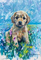Cocker Spaniel Puppy Love Fine Art Print