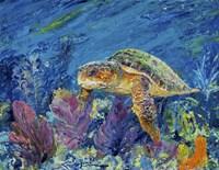 Loggerhead Turtle Fine Art Print