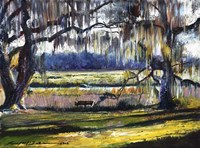 Lowcountry Spanish Moss Escape Fine Art Print