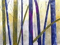 Bare Trees Fine Art Print