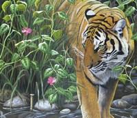 Endangered Fine Art Print