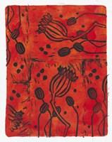 Poppy Pods Fine Art Print