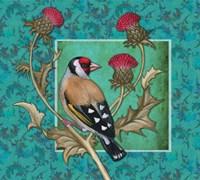 Little Bird I Framed Print