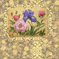 Old Garden Fine Art Print