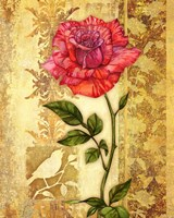 Rose on Golden Background Fine Art Print