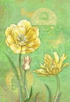 Spring Flowers I Fine Art Print