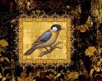 Bird On Black Background Fine Art Print