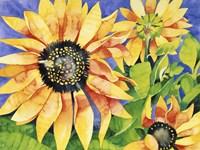 Magic Sunflowers Fine Art Print