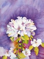 Moonflower Fine Art Print