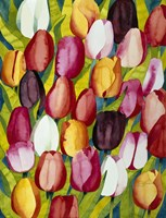 Colorful Tulips Fine Art Print
