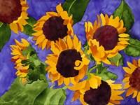 New Mexico Sunflowers Fine Art Print