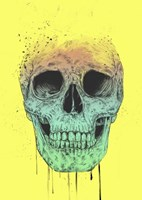 Pop Art Skull Fine Art Print