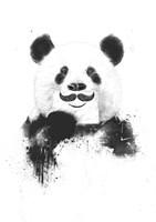 Funny Panda Fine Art Print