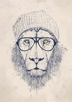 Cool Lion Fine Art Print