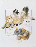 Persian Fine Art Print