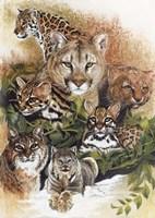 Feline Rhapsody Fine Art Print