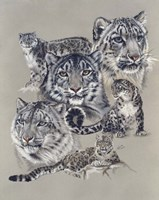 Uncommon Fine Art Print